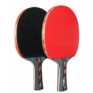 REGAIL Table Tennis Paddle Advanced Trainning Ping Pong Racket(2 Pcs)