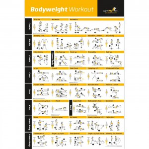NewMe Fitness Bodyweight Exercise Poster - Total Body Workout - Personal Trainer Fitness Program for Women - Hom