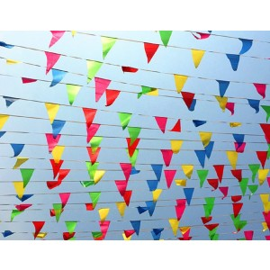 200Pcs Flag Banner,WowTop Multicolor Nylon Fabric Pennant Banner For Party Decorations,Grand Opening,Festival,250 Ft