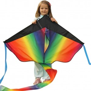 Huge Rainbow Kite For Kids - One Of The Best Selling Toys For Outdoor Games Activities - Good Plan For Memorable Summer Fun - This Magic Kit Comes w/ 100% Satisfaction