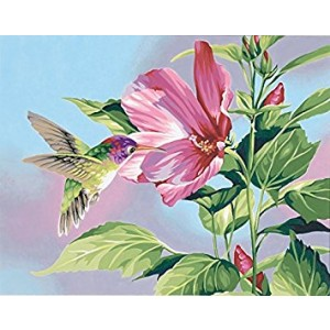 Dimensions Needlecrafts Paintworks Paint By Number, Hibiscus Hummingbird