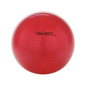 GoFit 55cm Exercise Ball