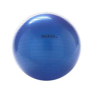 GoFit 75cm Exercise Ball