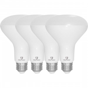 Great Eagle BR30 LED Bulb, 12W (100W Equivalent), 1210 Lumens, Direct Upgrade for 65W Bulb, 2700K Warm White Color, 120 Degree Beam Angle, Wide Flood Light, Dimmable, and UL Listed (Pack of 4)