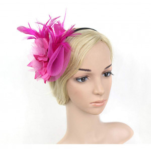 UKYLIN Charming Fascinator Netting Feathers Flower Floral Headband Cocktail Hat for Women (Rose)