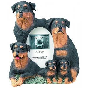 Rottweiler Gift Picture Frame Holds Your Favorite 3x5 Inch Photo, A Hand Painted Realistic Looking Rottweiler Family Surrounding Your Photo. This Beautifully Crafted Frame is A Unique Accent To Any Home or Office. The Rottweiler Picture Frame Is The Perfe