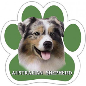 Australian Shepherd Car Magnet With Unique Paw Shaped Design Measures 5.2 by 5.2 Inches Covered In UV Gloss For Weather Protection