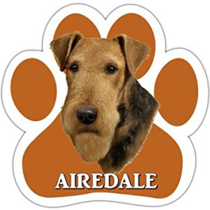 Airedale Car Magnet With Unique Paw Shaped Design Measures 5.2 by 5.2 Inches Covered In UV Gloss For Weather Protection