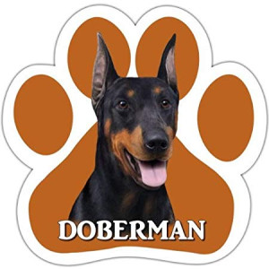 Doberman Car Magnet With Unique Paw Shaped Design Measures 5.2 by 5.2 Inches Covered In UV Gloss For Weather Protection