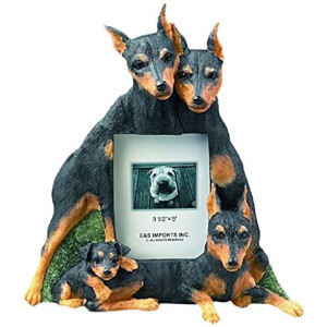Miniature Pinscher Gift Picture Frame Holds Your Favorite 3x5 Inch Photo, A Hand Painted Realistic Looking Miniature Pinscher Family Surrounding Your Photo. This Beautifully Crafted Frame is A Unique Accent to Any Home or Office. The Miniature Pinscher Pi
