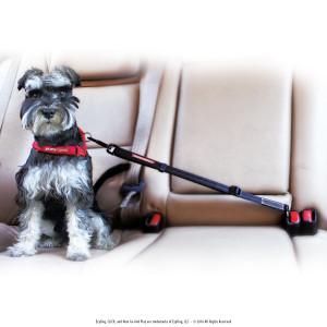 EzyDog Click - Best Dog Seat Belt Car Harness Attachment Dogs - Adjustable Dog Restraints Seatbelts Cars