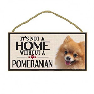 Imagine This Wood Sign for Pomeranian Dog Breeds