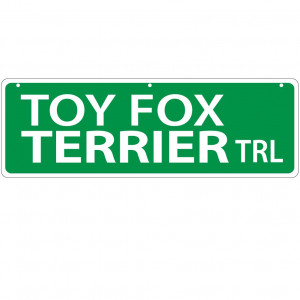 Imagine This Toy Fox Terrier Street Sign