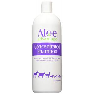Aloe Advantage Aloe Concentrated Shampoo, 32-Ounce