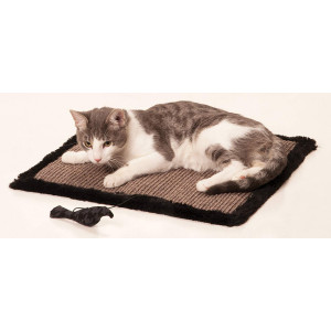 Max and Marlow Sisal Scratch Mat