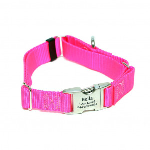 Rita Bean Engraved Buckle Personalized Martingale Style Dog Collar - Neon Pink Nylon Webbing