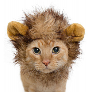 Pet Krewe PK00101 Lion Mane Costume for Small Dogs and Cats