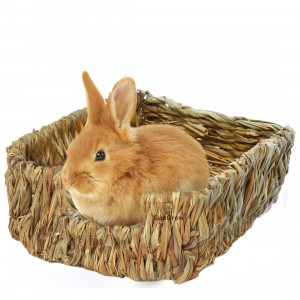 SunGrow Portable Grass Bed - Hand-Made with Natural Grass: Provides Paws Protection and Relaxation : Lightweight, Durable, Safe and Comfortable for Rabbits, Chinchillas, Guinea Pigs and Other Small Animals