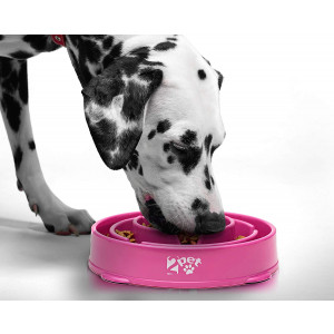 2PET Slow Feed Dog Bowl Slowly Bowly Fun Interactive Dog Dish for Fast Eaters. Prevent Bloating. Fun to Use Dog Bowl. Cat Feeder Friendly. [Skid Protection Upgraded]