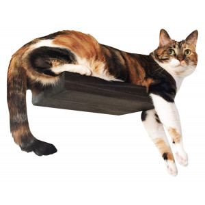 CatastrophiCreations Solid Wood Cat Shelf Handcrafted Wall-Mounted Cat Furniture
