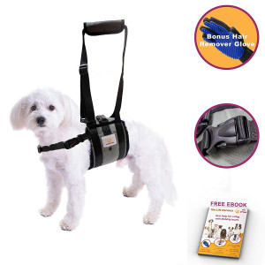 Veterinarian Approved Dog Support Harness + Hair Remover Glove - Dogs Sling Lift for Paralyzed Legs - Adjustable Straps - Mobility Rehabilitation for Injured Arthritis Elderly Disable