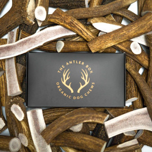 The Antler Box Premium Elk Antler Dog Chews (1 lb Bulk Pack) -Both Whole and Split Antlers-Long Lasting Organic Chewing Toys Sourced from Naturally Shed Antlers in The USA