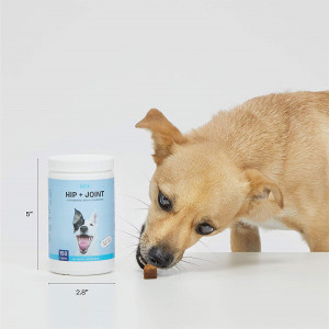 BarkBox Veterinarian-Formulated Dog Glucosamine Supplement for Hip and Joints - Made in The USA - with MSM and Chondroitin - 150 Chews/Treats