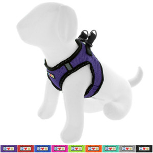 Pawtitas Pet Reflective Mesh Dog Harness, Step in Vest Harness, Comfort Control, Training Walking Your Puppy/Dog - No More Pulling, Tugging, Choking, Prevent Pulling