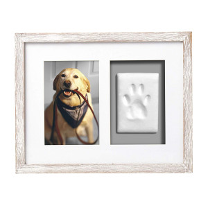 Pearhead Dog Or Cat Paw Prints Pet Wall Frame