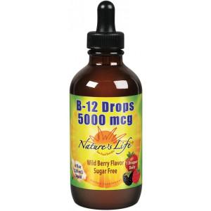 Nature's Life B12, Wild Berry, Green, 4 Fluid Ounce