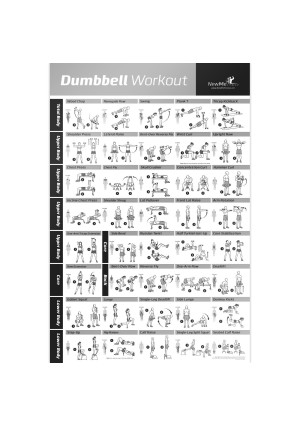 NewMe Fitness Dumbbell Workout Exercise Poster - Strength Training Chart - Build Muscle, Tone and Tighten - Home