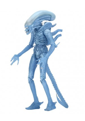 NECA Aliens Series 11 7 inch Action Figure - Warrior Alien (Kenner)