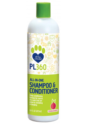 PL360 All-in-One Gel Shampoo and Conditioner, Fresh Pomegranate, 16oz