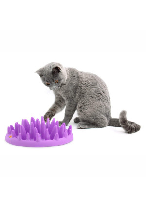 The Company of Animals - Northmate Interactive Cat Feeder - Slow Feed Bowl