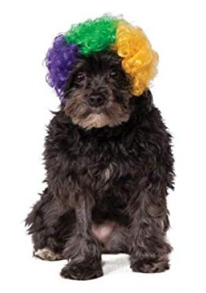 Rubies Mardi Gras Afro Pet Wig