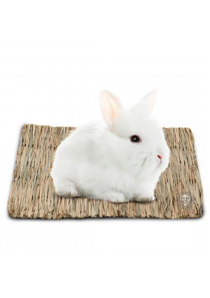 SunGrow Natural Seagrass Mat - Safe and Edible for, Hamsters, Rabbits, Parrot: Water Resistant Bed and Non-Toxic Toy
