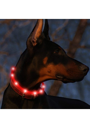 """BSEEN Led Dog Collar USB Rechargeable Glowing Pet Safety Collars Water Resistant Light up Cut to resize to fit 11""""-27"""" for Small, Medium, Large Dogs"""