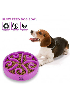 Decyam Pet Fun Feeder Dog Bowl Slow Feeder, Bloat Stop Dog Food Bowl Maze Interactive Puzzle Dog Bowl Non Skid