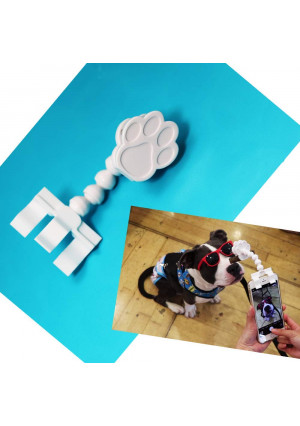 FlexyPaw The Best Way to Take Selfies or Portraits of Your Pet